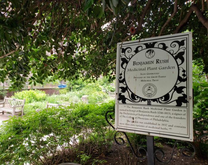 Mütter Museum Medicinal Plant Garden