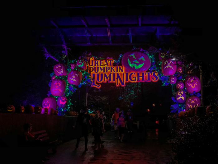 Great Pumpkin LumiNights lit up at night