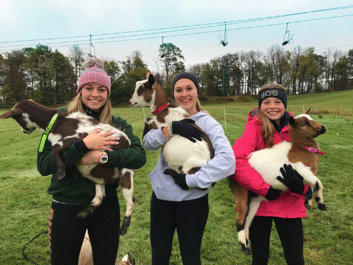 A group of people that are standing in the grass holding goats