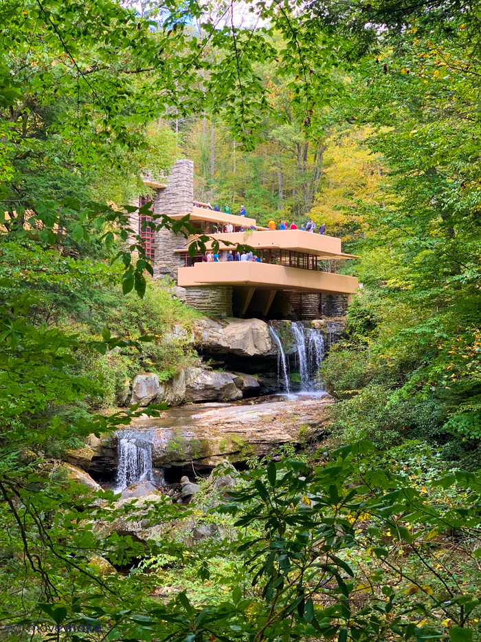 view of Fallingwater from trail