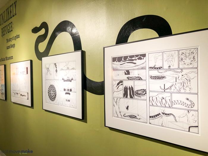 sketches of a burmese python