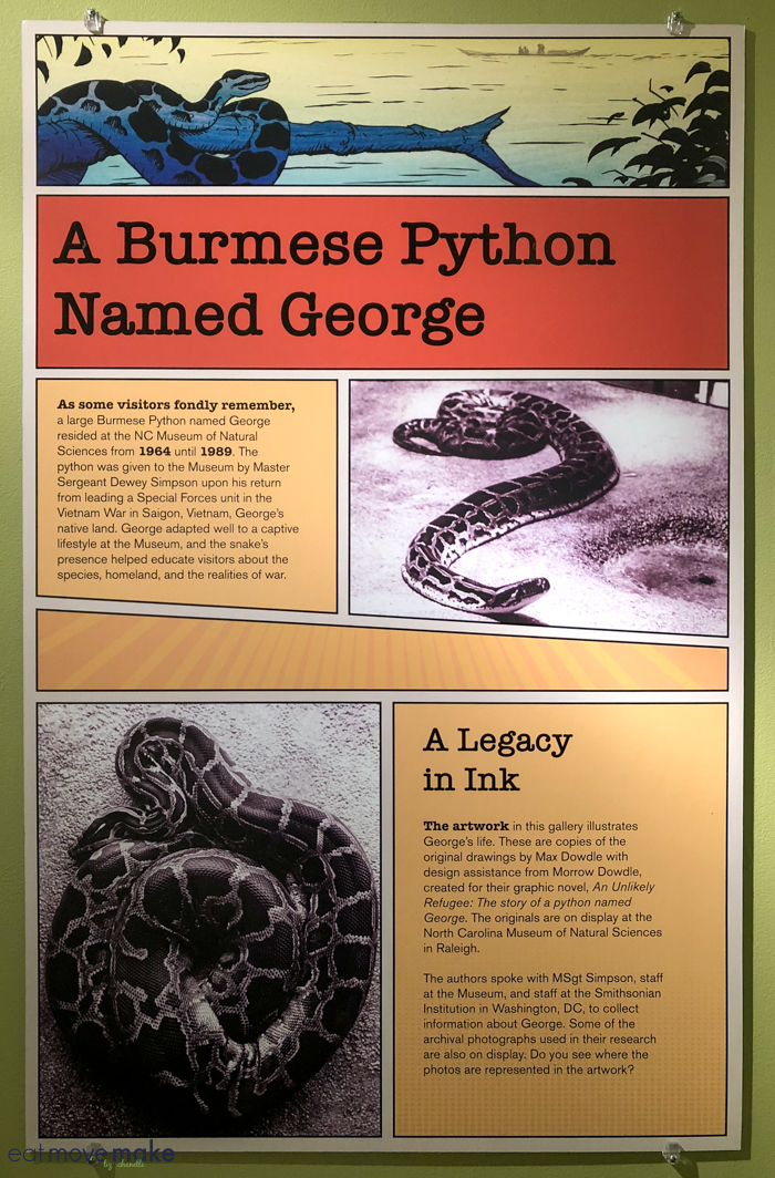 informational plaque about burmese python named George