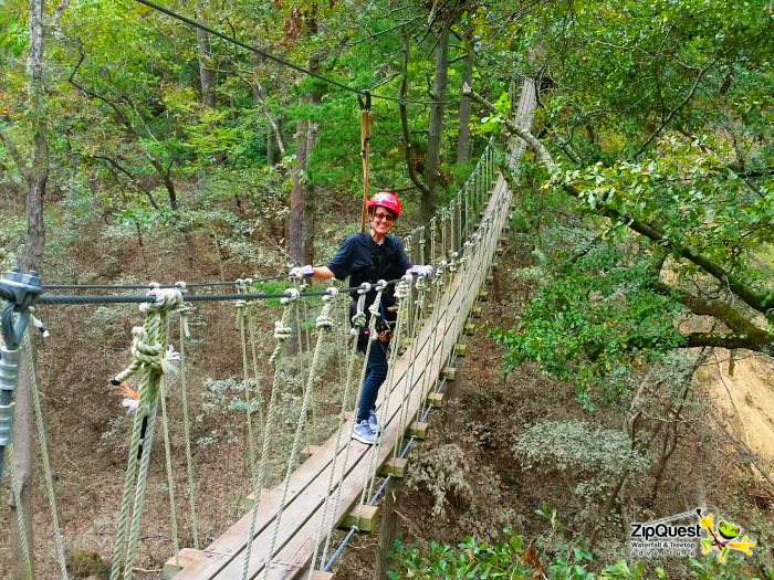 A person on a rope bridge in a forest