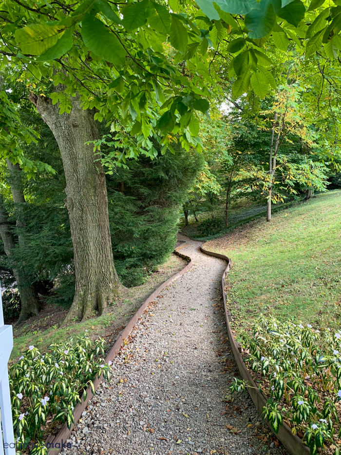 A path with trees on either side of it