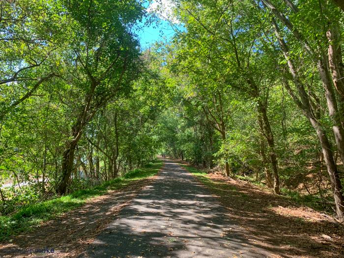 Percival's Island natural area