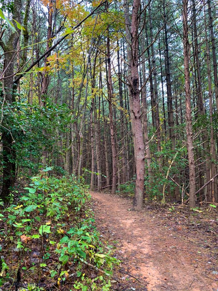 Fonta Flora State Trail