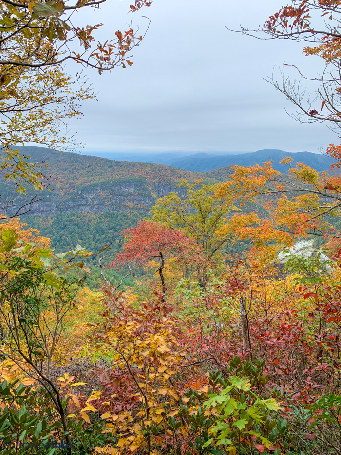 Fall foliage overlook