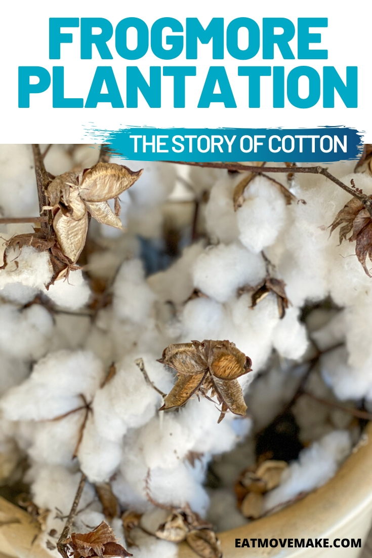 Frogmore Plantation - the Story of Cotton