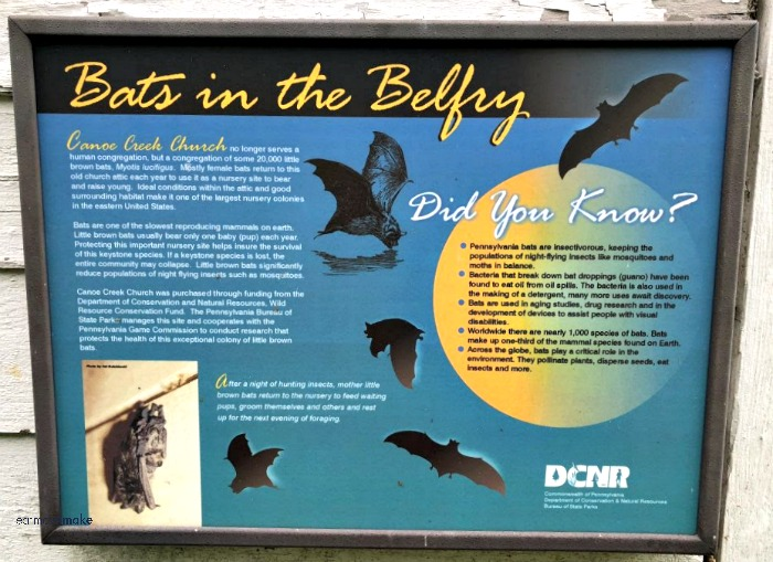bats in the belfry sign at church in Canoe Creek State Park