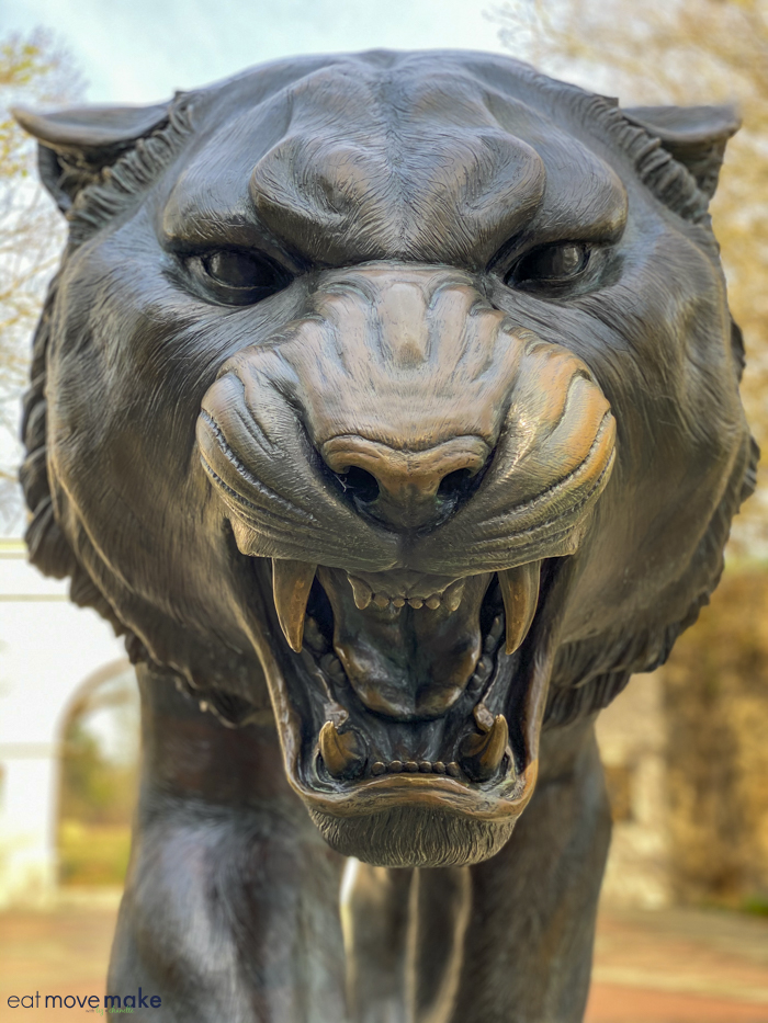 close-up of Mike the LSU tiger statue