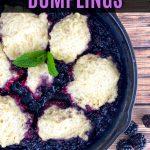 blackberry dumplings