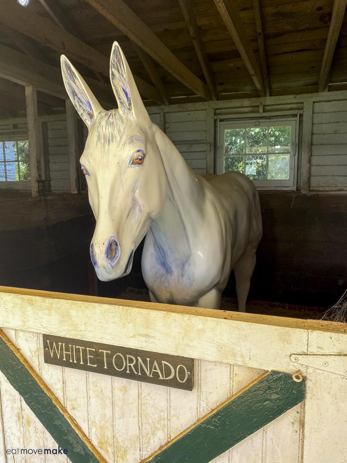 White Tornado mule