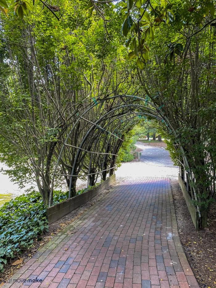 path in Hopelands Gardens