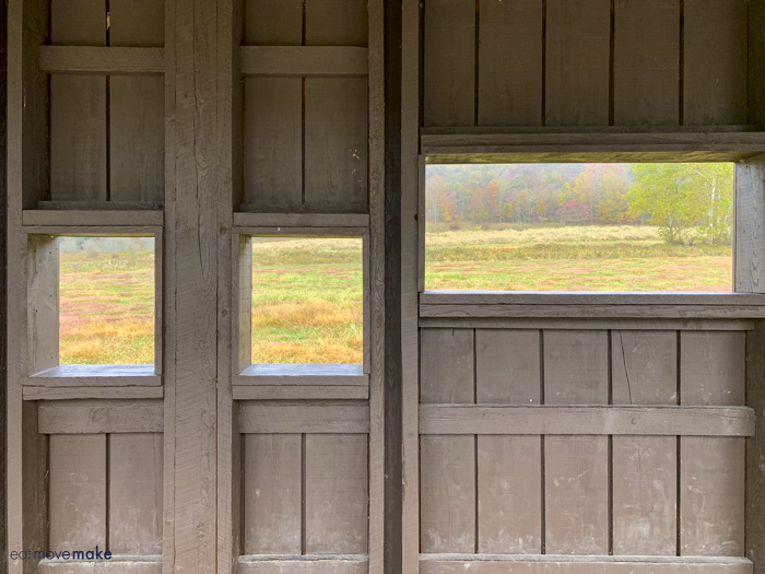 view through viewing windows