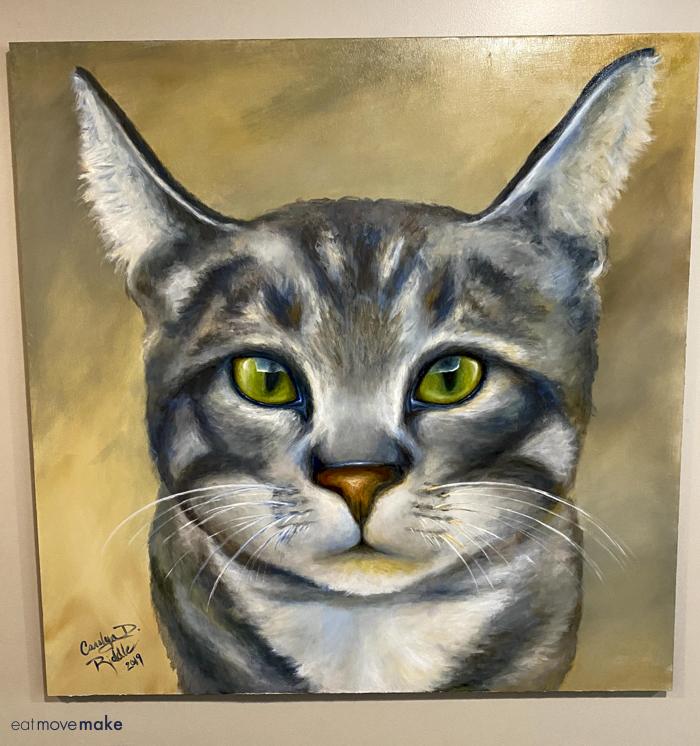 Dizzy the cat portrait
