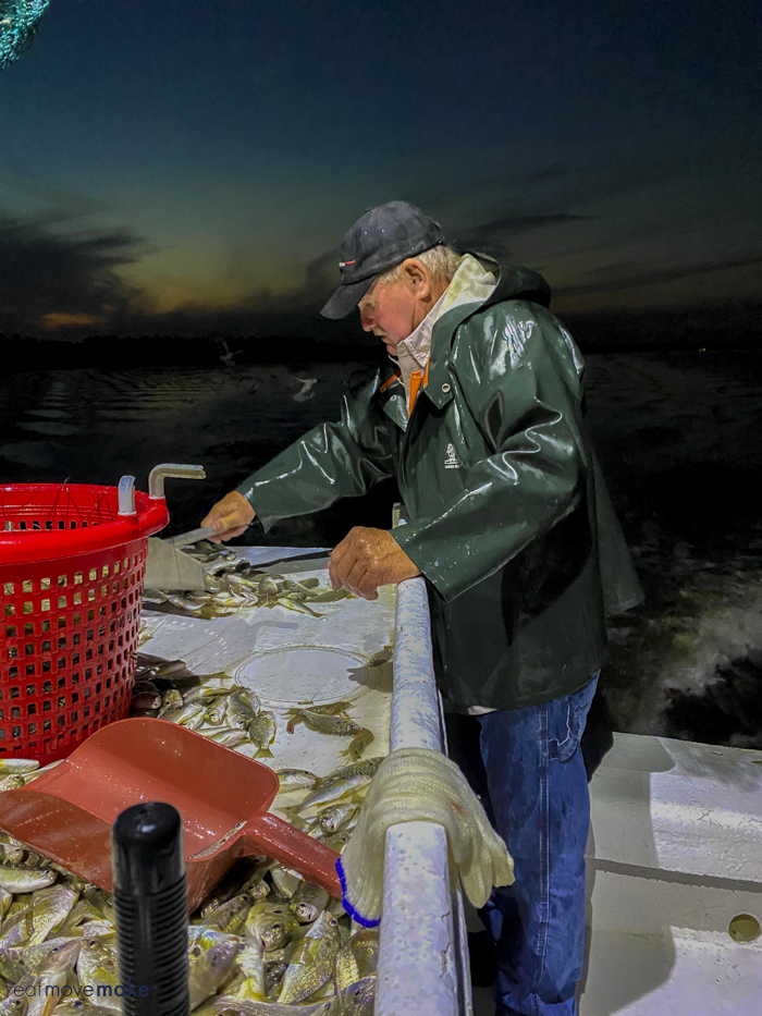 crabber sorting fish and shrimp
