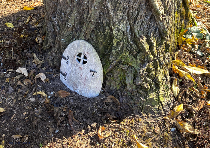 fairy door by tree