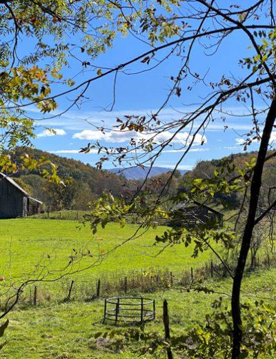 tobacco barn in field