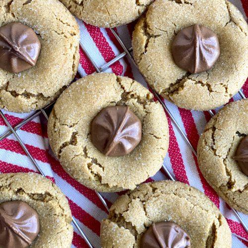 gingersnap chocolate star cookies up close