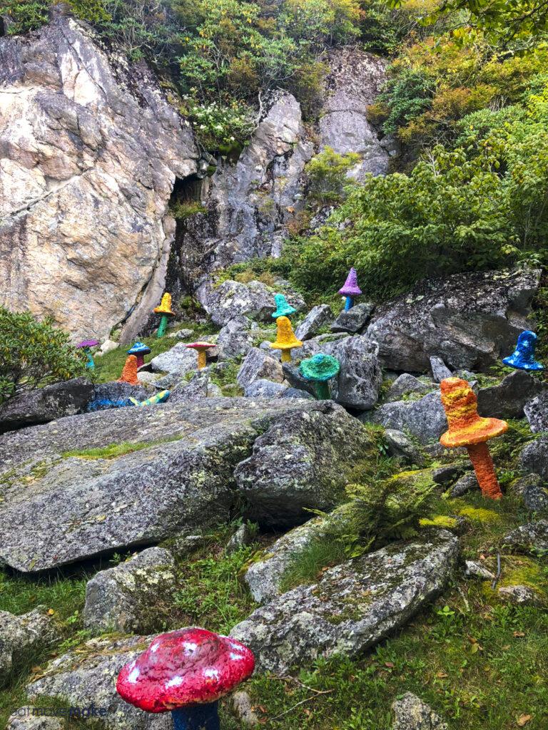 mushrooms at Land of Oz