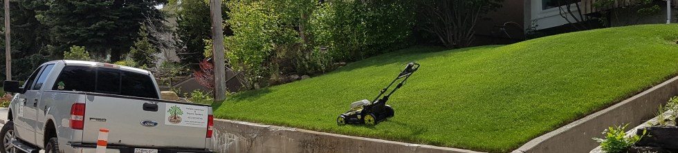 electric mower land care clean year round