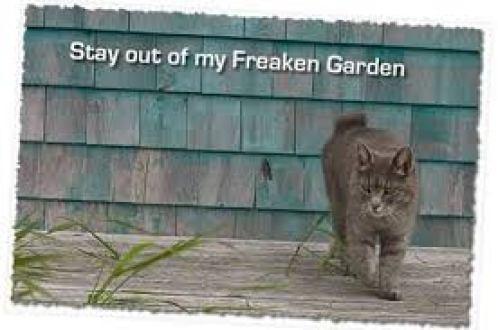 cat garden pest sprays