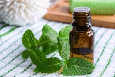 Peppermint Essential oils in bottle with leaf