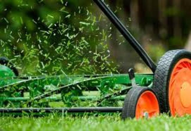 Close up of Reel Mower working organic lawn