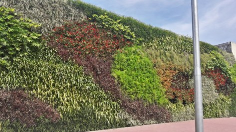 City green wall