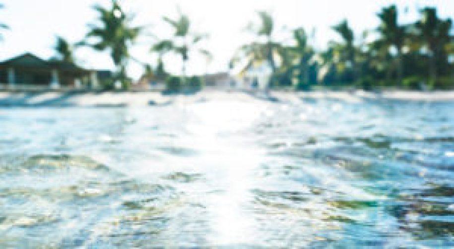 La plage de Mangrove Cay