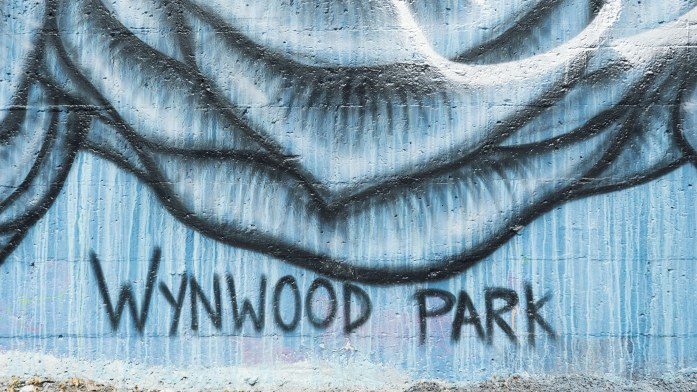 Wynwood park