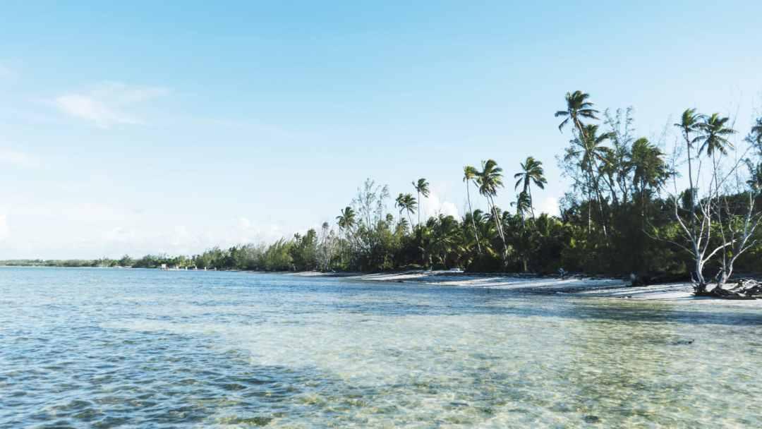La plage sur l'ile d'Andros aux Bahamas