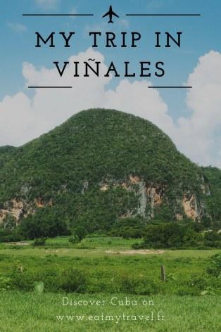 Pinterest Vinales