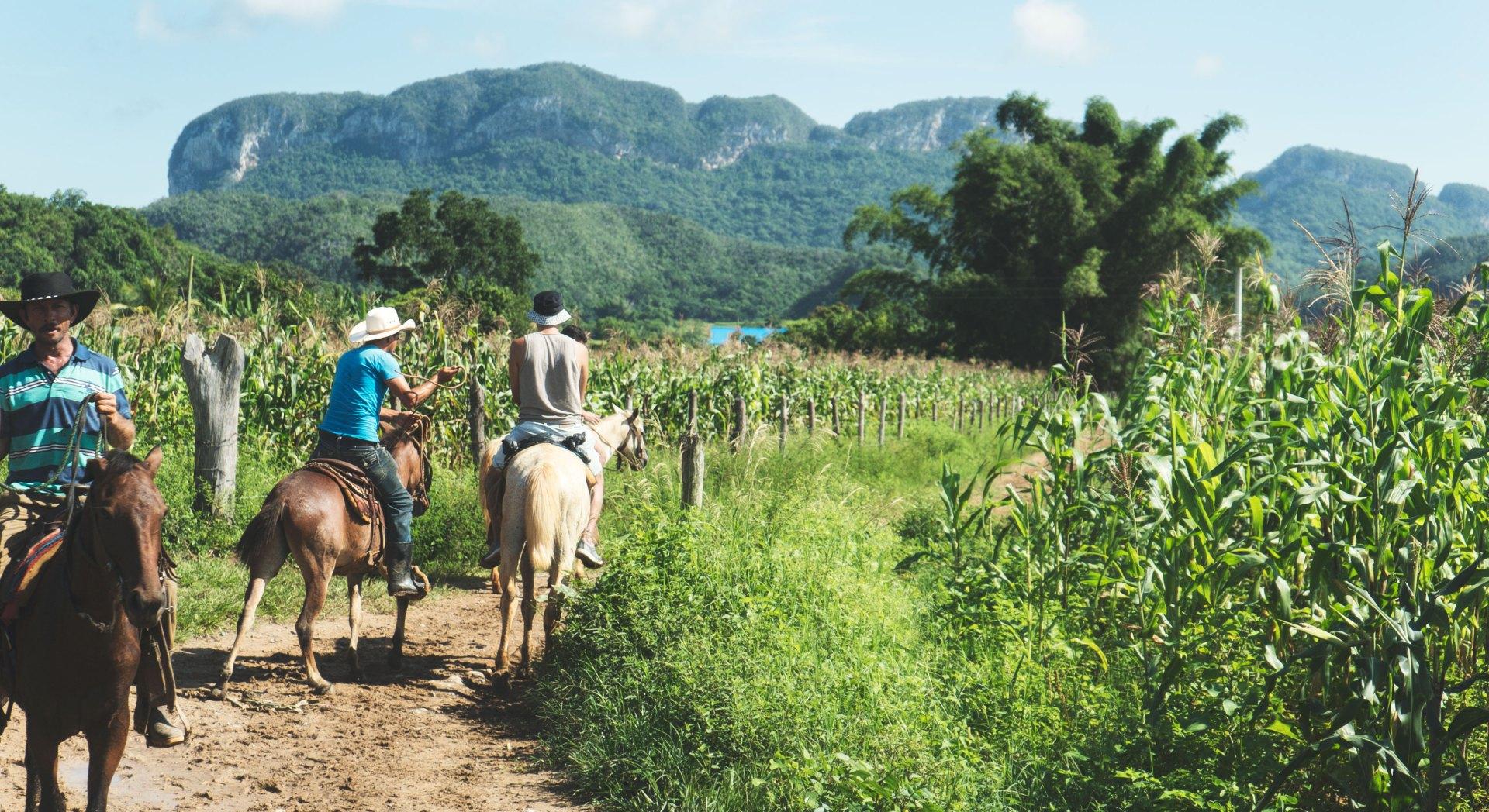 Faire du cheval à Cuba