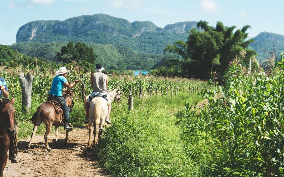 Viñales : le nord de Cuba, entre mogotes et champs de tabac