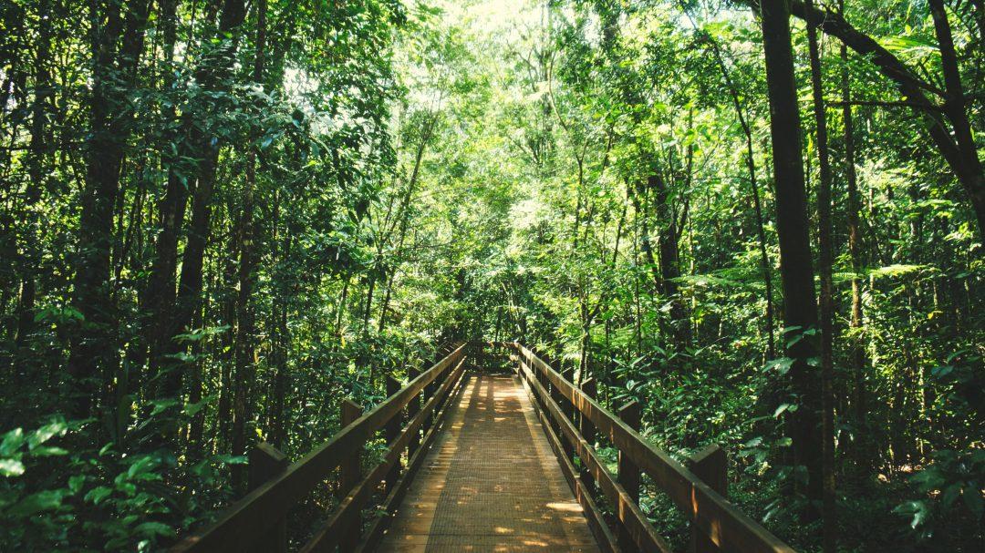 randonnée koghis parc riviere bleue