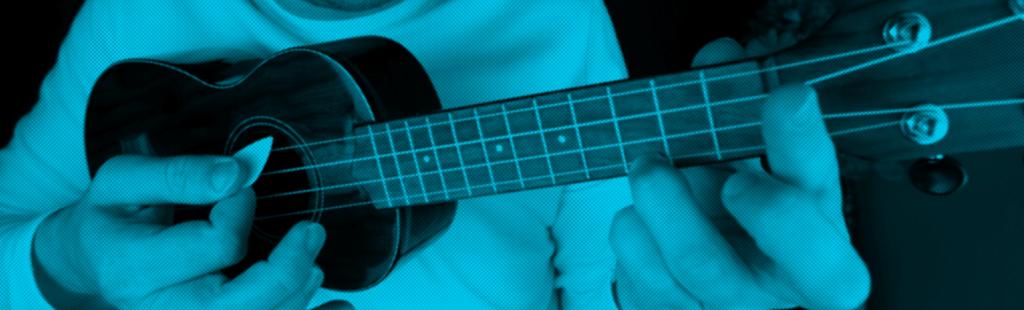 ukulele plectrum