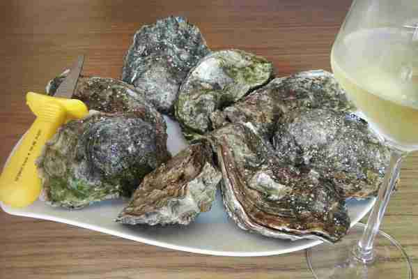 oyster tasting and white wine