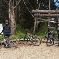 Mirboo North to Boolarra Rail Trail, October 2018