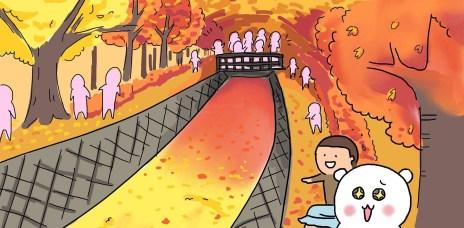 。山梨縣 河口湖。紅葉迴廊:人氣第一的賞楓景點,日楓夜楓一站滿足。