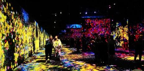 。東京 台場。teamLab borderless數位藝術美術館:光+影+音樂+創意,門票&交通&展場懶人包