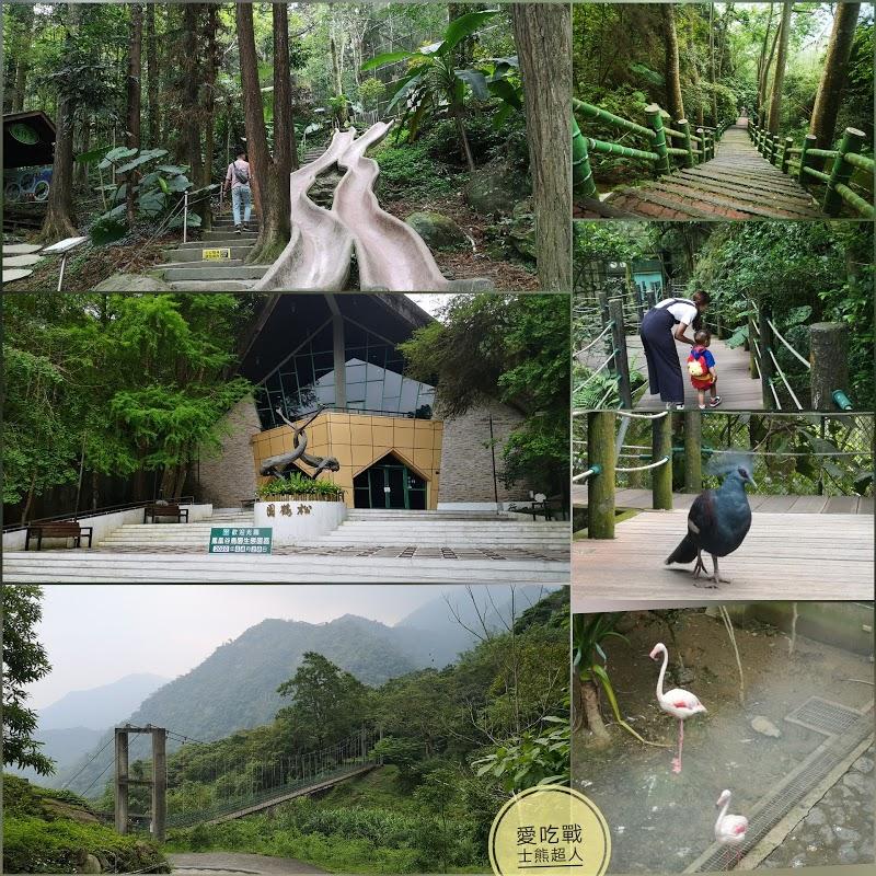 。南投 鹿谷。鳳凰谷-鳥園自然生態園區(攻略):體驗台灣國內旅遊WIFI+自然大成功,親近鳥禽+森林溜滑梯^^