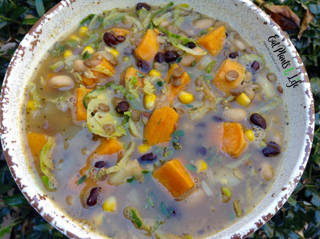 Triple Bean Sweet Potato Soup 2