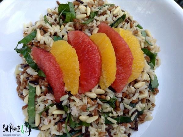 Citrus Rice4