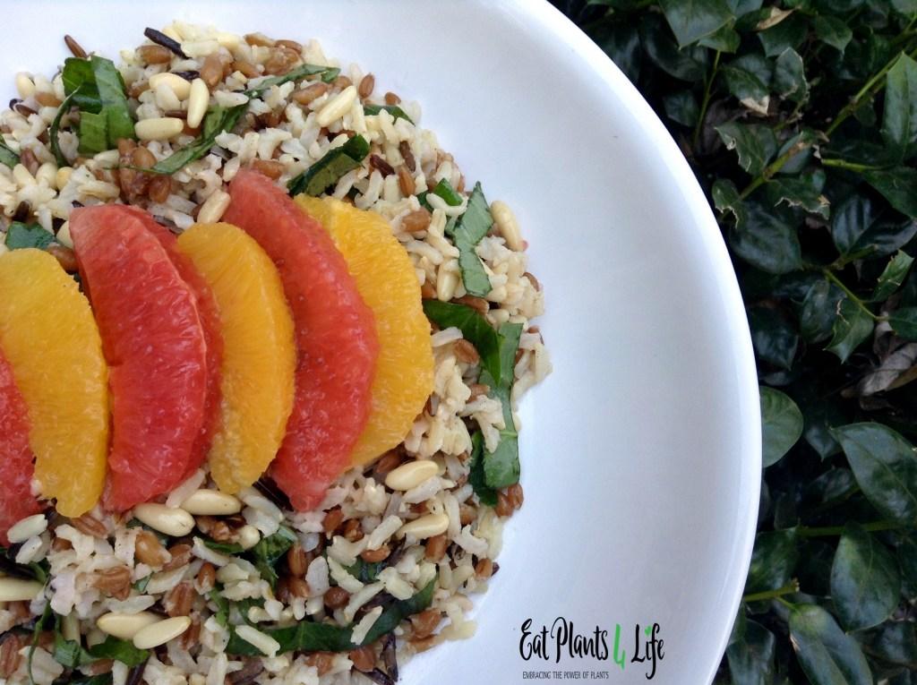 Citrus Wild Rice 2