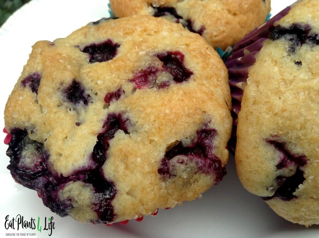 Veganizing a Recipe: Blueberry Muffins 2