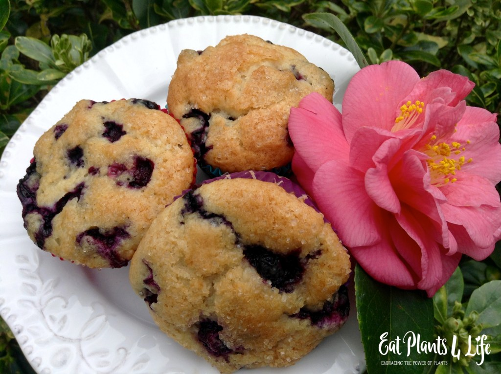 Veganizing a Recipe: Blueberry Muffins