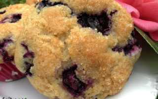 Veganizing a Recipe: Blueberry Muffins 2