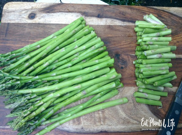 Asparagus Fries8