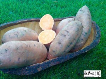 Sweet Potato Sliders 3